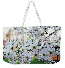 Weekender Tote Bag featuring the photograph Pear Tree by Donna Dixon
