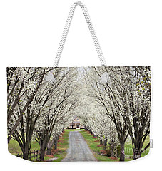 Weekender Tote Bag featuring the photograph Pear Tree Lane by Benanne Stiens