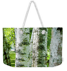 Weekender Tote Bag featuring the photograph Peek A Boo Birch by Greg Fortier