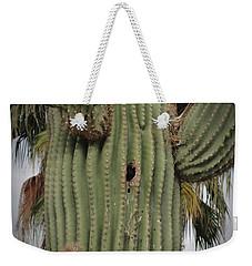 Peek-a-boo Cactus Wren Weekender Tote Bag