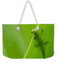 Peek A Boo Gecko Weekender Tote Bag