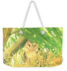 Peek A Boo Owl Weekender Tote Bag