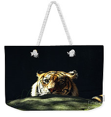 Weekender Tote Bag featuring the photograph Peek-a-boo Tiger by Angela DeFrias