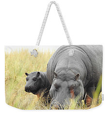 Weekender Tote Bag featuring the photograph Peek by Betty-Anne McDonald