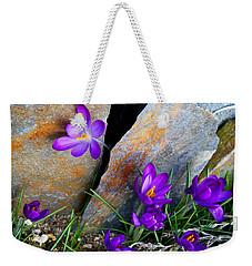 Weekender Tote Bag featuring the photograph Peek by Kathryn Meyer