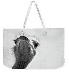Peekaboo Ostrich Weekender Tote Bag