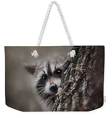 Peekaboo Raccoon Art Weekender Tote Bag by Jai Johnson