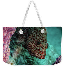 Weekender Tote Bag featuring the photograph Peeking Coney by Jean Noren