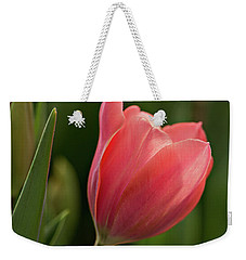 Weekender Tote Bag featuring the photograph Peeking Tulip by Mary Jo Allen