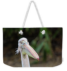 Pelican Headshot Weekender Tote Bag by Matt Malloy