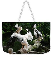 Pelican Hideaway Weekender Tote Bag