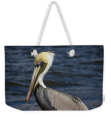 Weekender Tote Bag featuring the photograph Pelican Profile 2 by Jean Noren