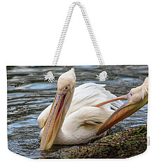 Pelican Tickle Weekender Tote Bag by Matt Malloy