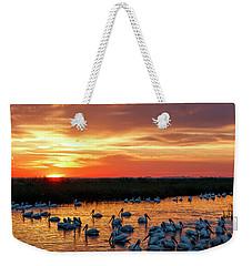 Pelicans At Sunrise Weekender Tote Bag by Rob Graham