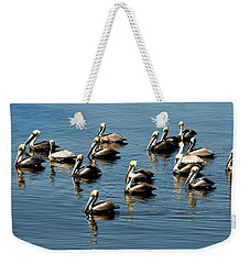 Pelicans Blue Weekender Tote Bag