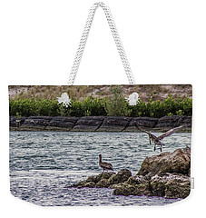 Pelicans  Weekender Tote Bag by Nance Larson