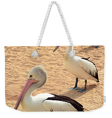 Pelicans Seriously Chillin' Weekender Tote Bag