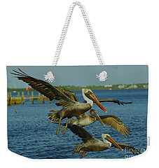 Pelicans Three Amigos Weekender Tote Bag