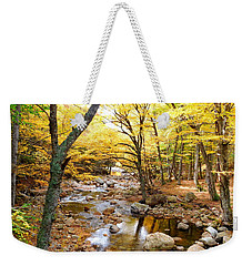 Pemigwasett River At The Flume Weekender Tote Bag