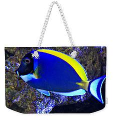 Blue Tang Fish  Weekender Tote Bag