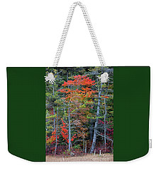 Weekender Tote Bag featuring the photograph Pennsylvania Laurel Highlands Autumn by John Stephens