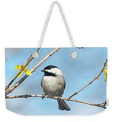 Pensive Chickadee Weekender Tote Bag