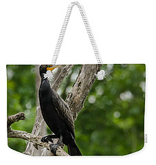 Weekender Tote Bag featuring the photograph Perched Double-crested Cormorant by Steven Santamour