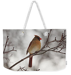 Perched Female Red Cardinal Weekender Tote Bag