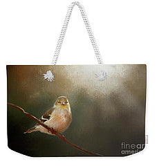 Weekender Tote Bag featuring the photograph Perched Goldfinch by Darren Fisher