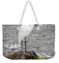Weekender Tote Bag featuring the photograph Perched Great Egret by Ricky L Jones