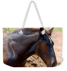 Percheron Colt - Digitalart Weekender Tote Bag