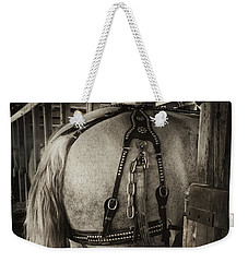 Percheron Draft Horse Weekender Tote Bag by Theresa Tahara
