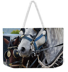 Percheron Horses Weekender Tote Bag by Theresa Tahara