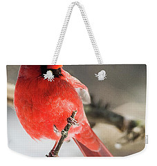 Perching Mister Cardinal Weekender Tote Bag