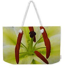 Perfect Beauty Weekender Tote Bag