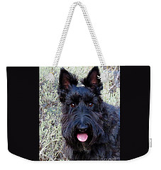 Scottish Terrier Portrait Weekender Tote Bag by Michele Penner