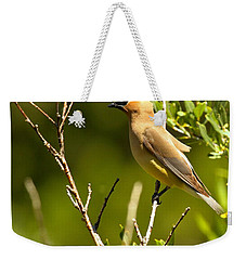 Perfectly Perched Weekender Tote Bag by Adam Jewell