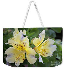 Weekender Tote Bag featuring the photograph Peruvian Lily 2 by Victor K