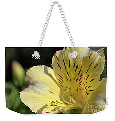 Weekender Tote Bag featuring the photograph Peruvian Lily by Victor K