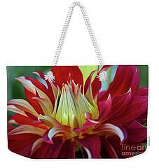Petals In Red Velvet Weekender Tote Bag by Patricia Strand