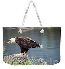 Petersburg Ak Bald Eagle 4 Weekender Tote Bag