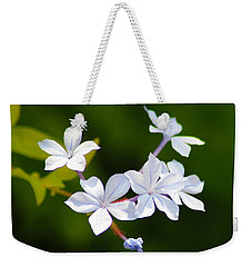 Petite Plumbago Blossoms Weekender Tote Bag by Richard Stephen