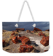 Weekender Tote Bag featuring the photograph Petrified Forest National Park by James Peterson