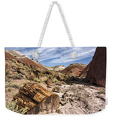 Weekender Tote Bag featuring the photograph Petrified Wood In The Painted Desert by Melany Sarafis