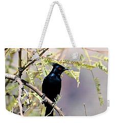 Phainopepla Black Cardinal Weekender Tote Bag
