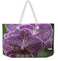 Weekender Tote Bag featuring the photograph Phalaenopsis Orchid by Cristina Stefan