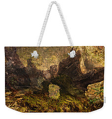 Photography Background Fantasy Woodland Fairy Faery Scenic Weekender Tote Bag by Suzanne Powers