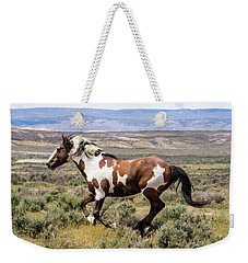 Picasso - Free As The Wind Weekender Tote Bag by Nadja Rider
