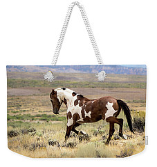 Picasso Strutting His Stuff Weekender Tote Bag
