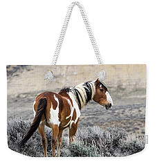 Picasso - Wild Mustang Stallion Of Sand Wash Basin Weekender Tote Bag by Nadja Rider